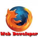 web_developer_logo