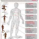 infografia-anatomia-de-un-blog